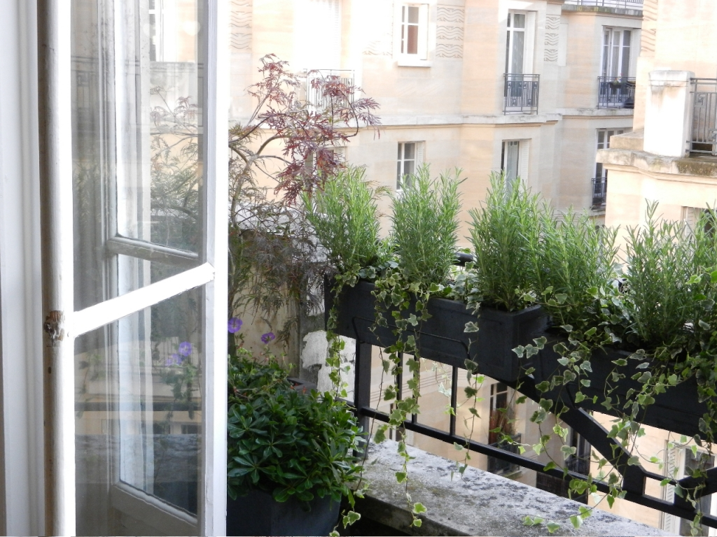 Am nagement paysager d 39 un balcon filant paris l 39 aurey des jardins for Paysagistes paris