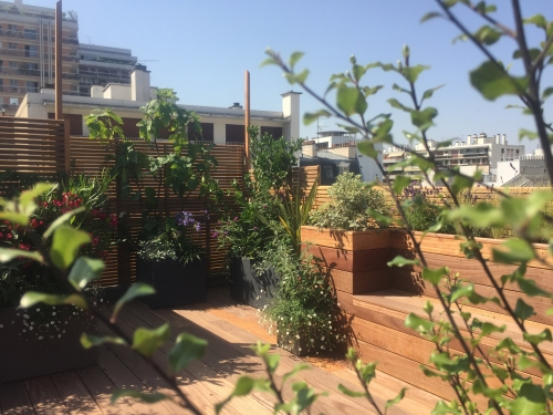 paysagiste, terrasse, rooftop, paris