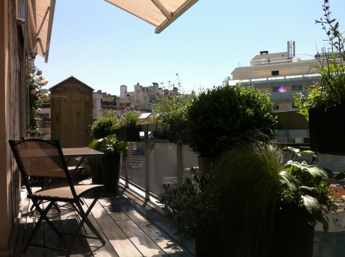 balcon filant, paris, paysagiste