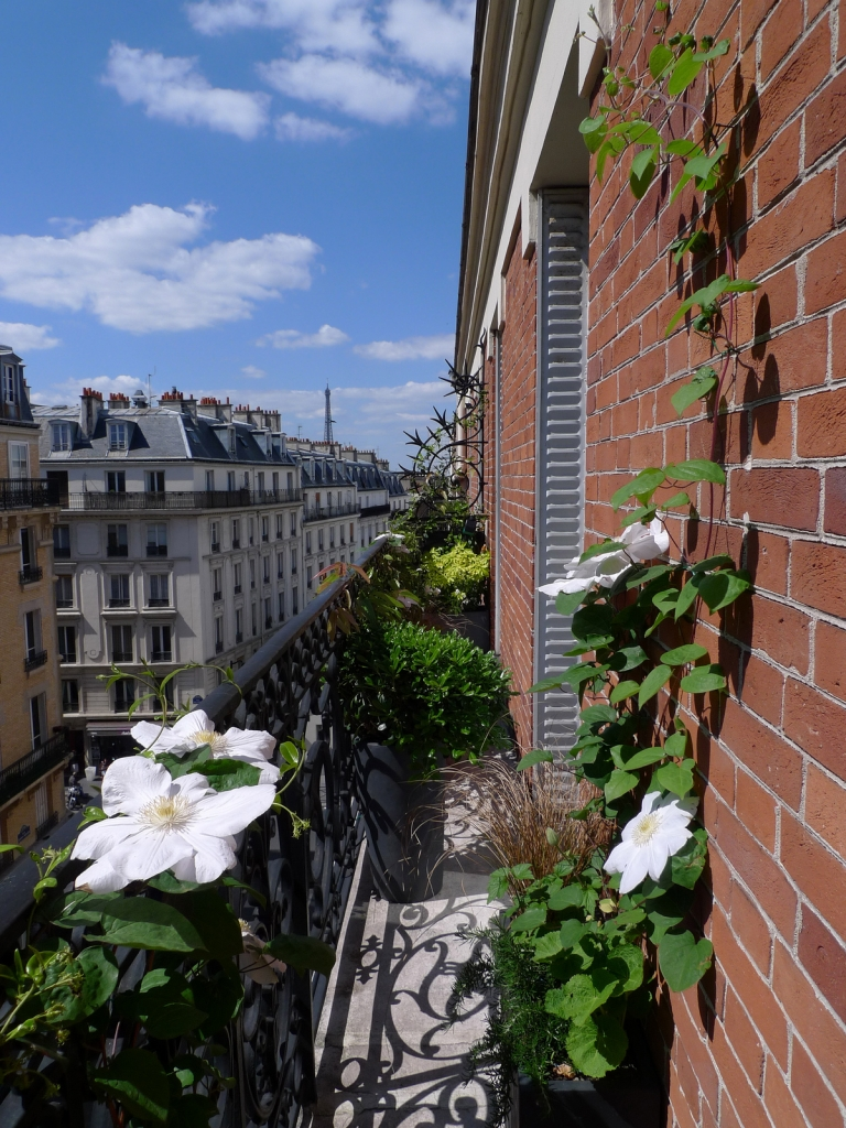 D coration balcon filant for Decoration balcon d appartement